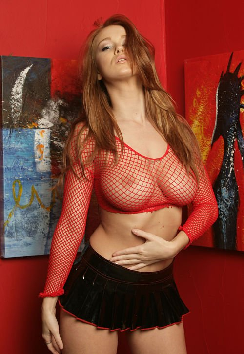 sexy-fishnet-reveals boobs-photo 12