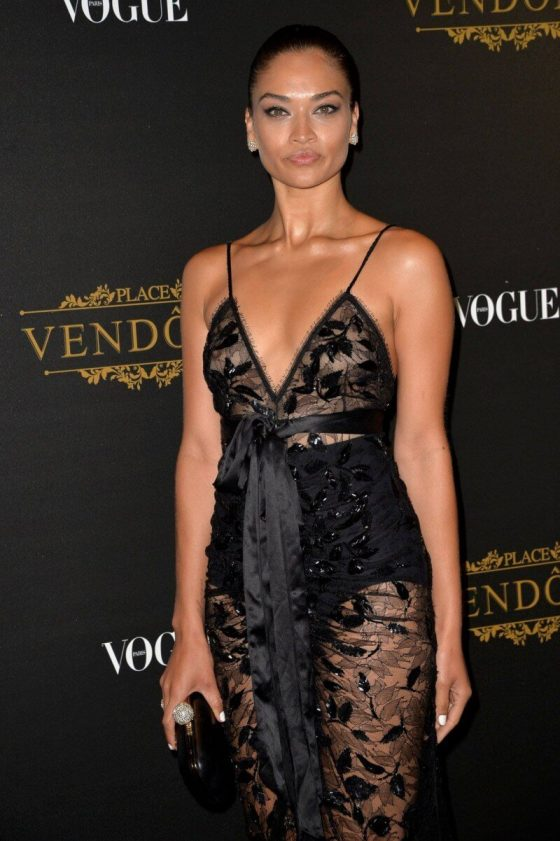 Shanina Shaik sexy see-through dress