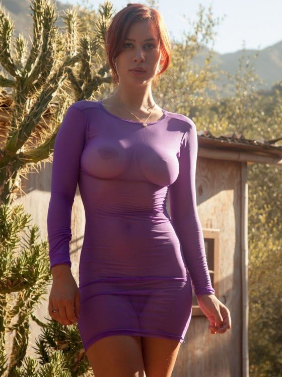Orli Krowan Sheer Purple Dress