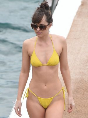 Sexy Dakota Johnson Topless Bikini In France